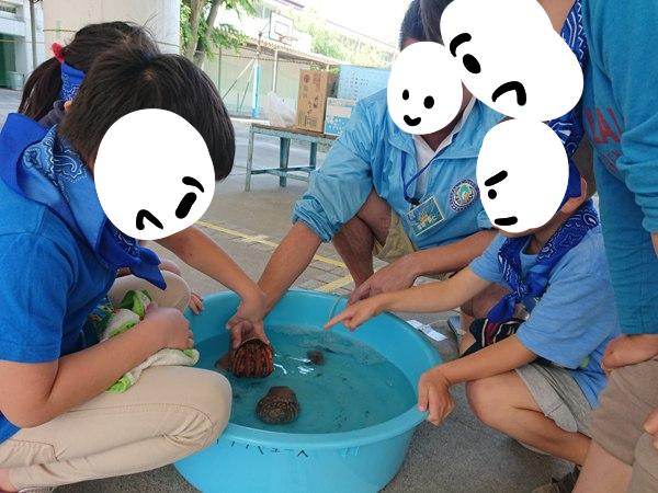 間門小学校でタッチングプール