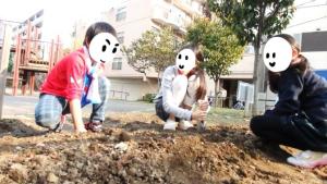 花植え活動